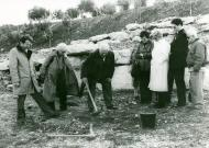 Planting the olive tree in the Avenue of the Righteous