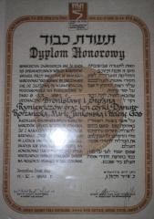 The YV Diploma of the Ryniewicz family